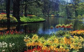 Islam paradise 1